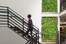 Inspiration // Living Wall / All things Living Walls, Green Walls, Vertical Gardens #SustainableDesign