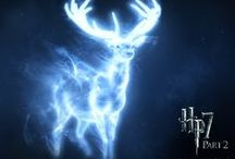 Harry Potter Pictures Images
