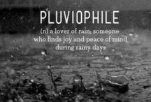 Pluviophile / I love the rain.  It seduces me to slow down & reminds me that I have everything I need within me.  It is a physical representation of the earth & her love in liquid form.  Living in Southern California we don't get enough of it these days so when she comes I feel the sacredness of it.