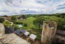 Coin de verdure / De multitudes d'ambiances et de styles, visitez les jardins du Château de la Flocellière...