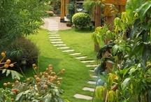 Trends in Design - Landscaping