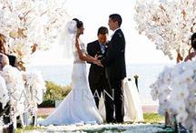 Wedding Ceremony / by Margaret Rozzi