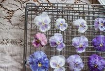 Inspiring us today... / Some of the images that inspire our floral work on a daily basis