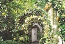 Secret Gardens / Garden Design Inspiration