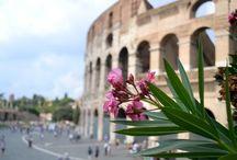 My beautiful Rome