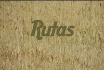 Rutas