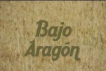 Comarca del Bajo Aragón