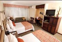 Hotel y habitaciones / Decoración
