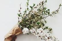 // Floral