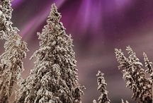 """Nature 