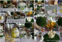 THATA PARTY IDEAS / Portifolio Party Ideas by TATA Renata Cinelli