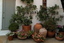 Decor - Garden ideas and DIY