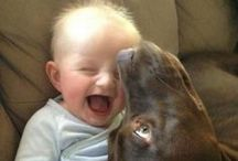 Babies make me smile / Babies of all kinds; human and animal...love them all! / by Stephanie Woodland