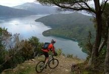 Mountain Biking / Mountain Biking for a Better Health / by Mirto Nogera