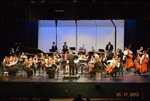 Youth Orchestra / The Fayetteville Symphony Youth Orchestra (FSYO) is an ensemble that gives any instrumental student in the greater southeastern North Carolina area the opportunity to perform on their chosen instrument in a select orchestra.