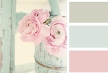 Paint Colors & Painting Tips