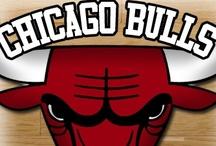 My CHICAGO BULLS