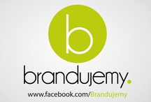 branding + logo