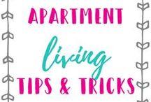 Apartment Living / Apartment decor, budget friendly apartment living, budgeting, moving tips