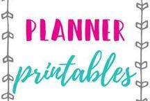 Planner Printables / Planner stickers, bullet journal, happy planner, Erin Condren, organization stickers, decorative stickers, printables