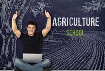 Τομέας Αγροτικής Ανάπτυξης