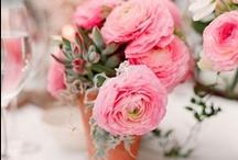 ranunculus / Ranunculus bridal bouquets, arrangements, flower decorations