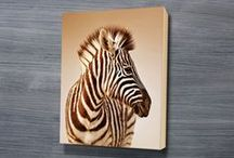 The Animal Kingdom / Stunning art collection, canvas prints contains photos of  many beautiful animals and other wildlife from around the world made using the highest quality materials. All of our canvas print are delivered ready to hang straight on the wall.