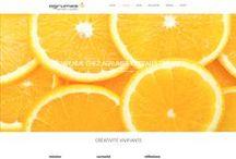 Web / Jérémie Lacasse Graphiste / Échantillons de création web de Jérémie Lacasse