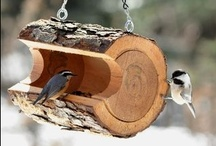 <Bird feeder> / Winter is coming, need to take care of my favourite cutest visitors :) / by ieva mazeikaite