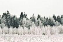 winter love / by KYLIE LYNN