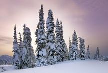 Snow snow and ice