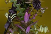 Flora Styling