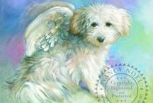 """in love with Maltese doggies forever / for Tina, our little Maltese girl who died 6 December 2013. she arrived here with a broken little body, just """"skin and bone"""", full of soares 12 years ago. we took care of her with love from day 1. Miss you my little girl.  mommy"""