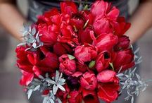 color wedding red