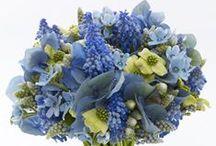 color wedding blue