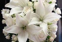 color wedding white