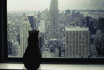 NYC - Big Apple
