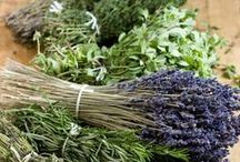 Smell it .... Provence