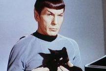 Celebs + cats
