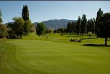 """Park Meadows / A pleasurable 18 hole championship """"resort"""" course that is walker friendly amidst a park-like setting. Tree-lined and more open play does not necessarily make this the easier of the two. It will challenge your game in a manner different from the Desert Gold.  http://golfosoyoos.com/parkmeadows/"""