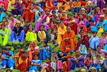 Glorious colours of India / by Tanya Montandon