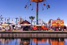 Life in Tampa, Florida / Check out my favorite moments and pins around the beautiful Bay city of Florida.