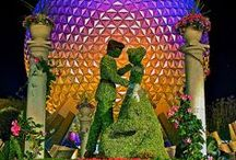 Epcot / Let's go on a globe trotting excursion to Disney's Epcot. Your future to tomorrow!