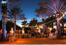Marco Island Marriott - Sarah / Gulfside Media Photography, Marco Island Marriott Weddings, Marco Island Wedding Photographer, Marco Island Weddings, #gulfsidemedia, #marcomarriott, @gulfsidemedia, @marcomarriott