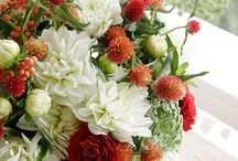 Flower's decor / Flowers and flower's decors