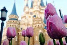 Magic Kingdom / Beautiful pins for Disney's Magic Kingdom