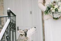Winter Weddings / Winter weddings are very unique!