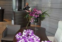 SPG Awareness Week  / We have completed our first Starwood Preferred Guest® awareness week. We had a great purple week!