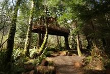 As Seen on #TreehouseMasters / Pete Nelson creates some epic treehouses. Check out some of our favorites!