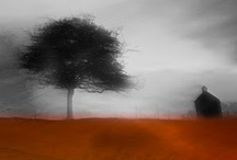 Chris Friel